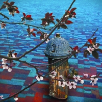 blossoms-ariels fireplug-collage